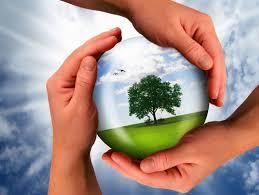 День окружающей среды Украины
